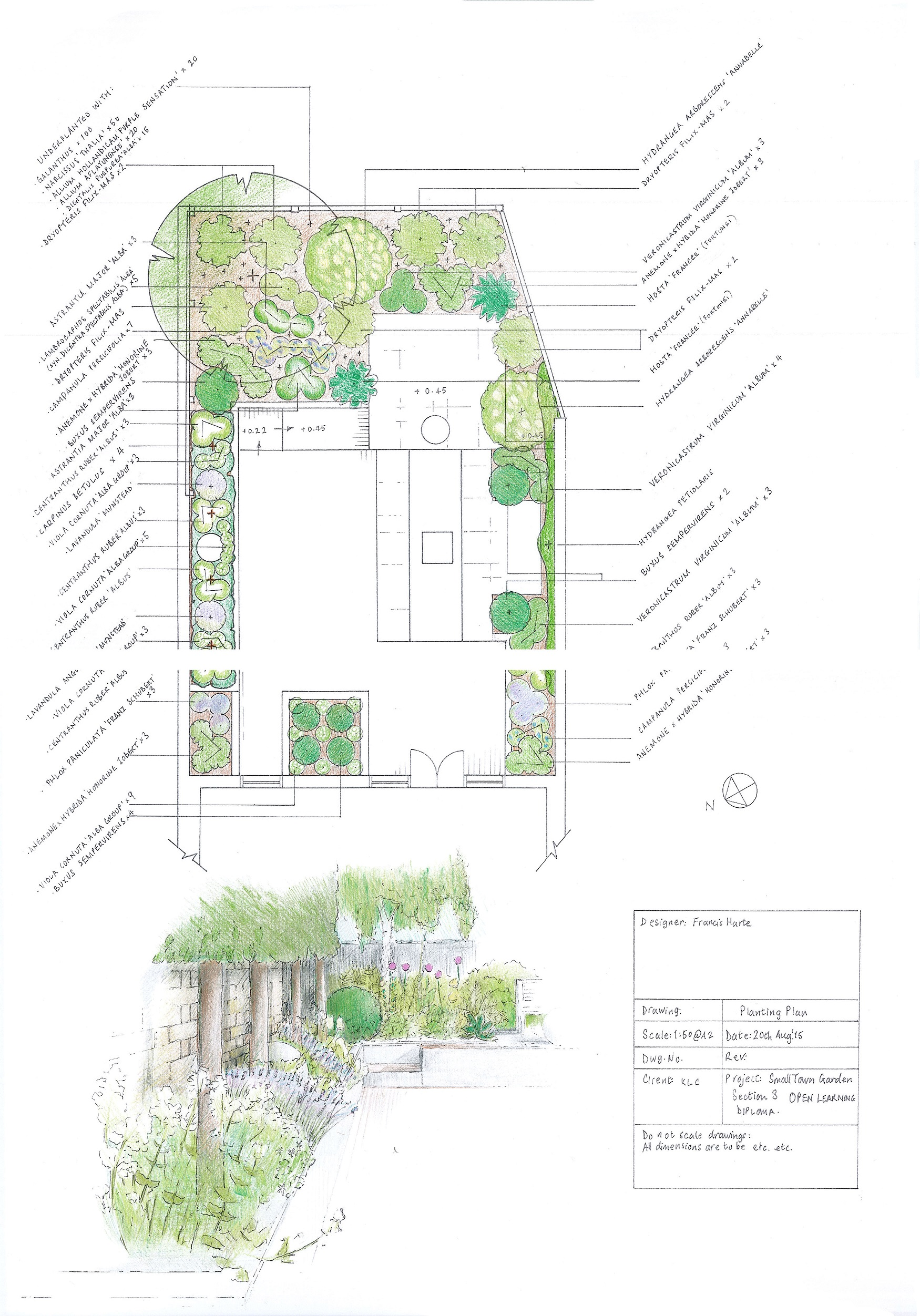 3.2 Small Town Garden Planting Plan with Sketch by Francis Harte